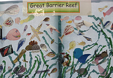 Yr 3/4 Students Great Barrier Reef Unit